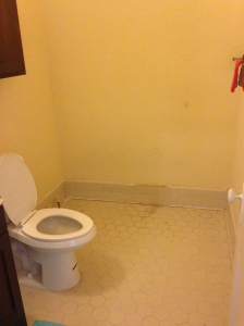 "I call this the ""lonely throne"" bathroom. The tub, inexplicably, is missing."